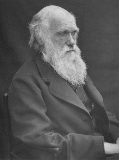 Sexual selection and the descent of man the darwinian pivot